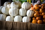white and orange pumpkins