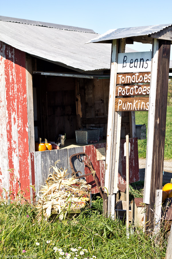 amish produce stand
