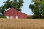 red barn in ohio grain field