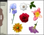 KCH_PainterlyFlowers-EMBSets_MKTG_800