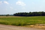 farmland near Shreve